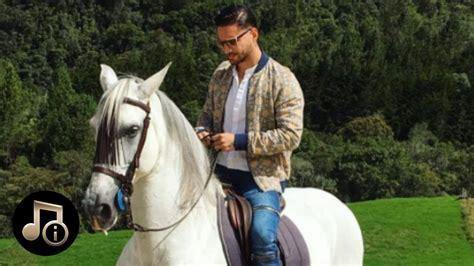caballo y muchacho el el caballo de maluma youtube