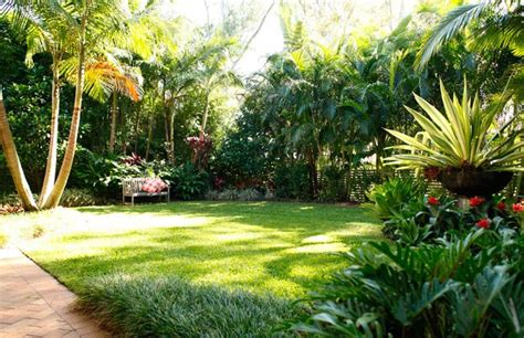 tropical landscaping ideas services landscape design landscape construction garden maintenance
