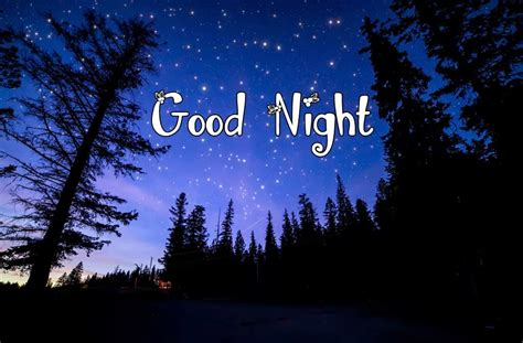 imagenes de good night and sweet dreams good night pictures images photos