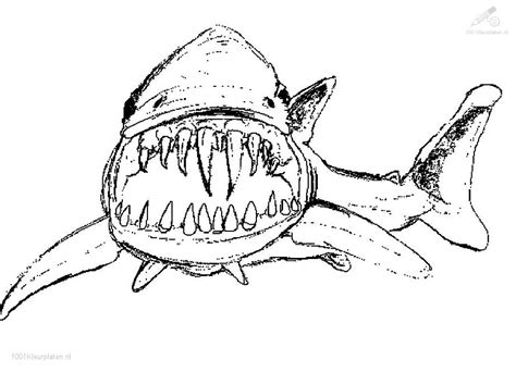 free draw sharks coloring pages