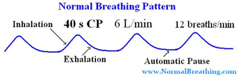 pattern breathing definition wecare nursing home inc what is pulse rate respiratory