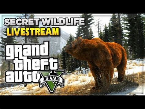 Ep Gamis Gyna gta v on ps4 5 animals you must play as doovi