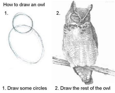 how to draw doodle owl how to draw an owl