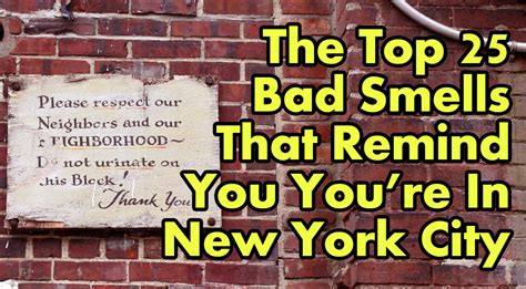 Smell Of In New York the top 25 bad smells that remind you you re in new york