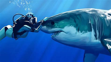 dive gratis sharks to be petted they re like dogs