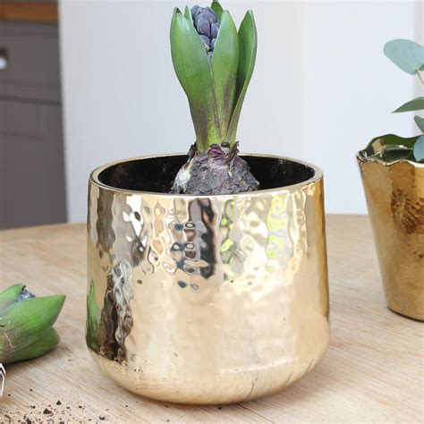 gold hammered planter by marquis dawe