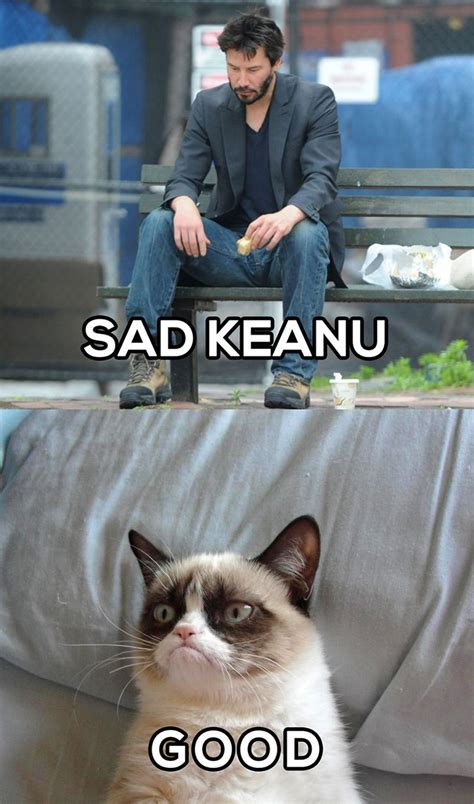 Sad Keanu Reeves Meme - grumpy cat on sad keanu grumpy cat pinterest sad