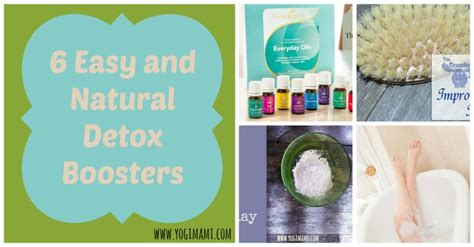 Abba Detox Shoo Ingredients by 10542 Best Holistic Friends Images On