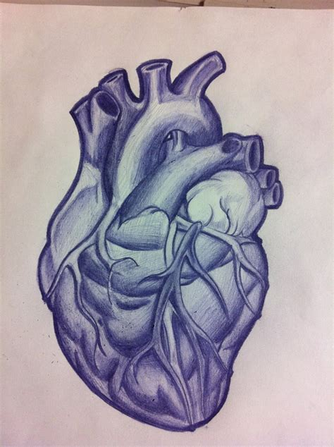 anatomically correct heart tattoo anatomical by tricomiart on deviantart