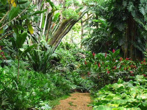 Allerton Garden Tour by 12 Jurassic Park Filming Locations In Hawaii