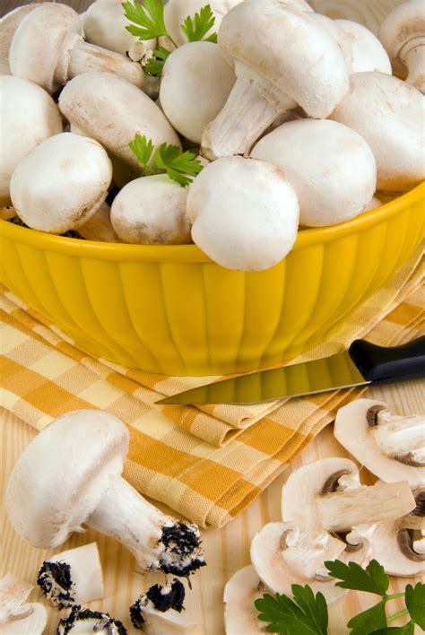cucinare funghi coltivati chignon sale pepe