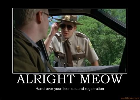 Super Troopers Meme - the mid day meow nbacats com