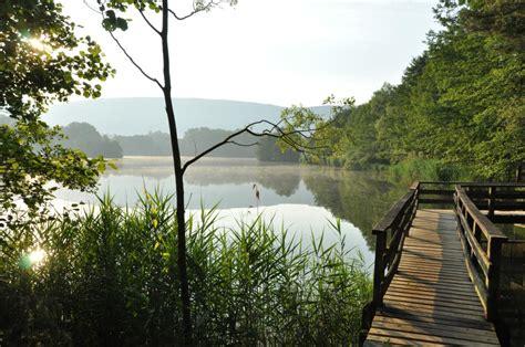 La Grange Du Pin etang de la grange du pin