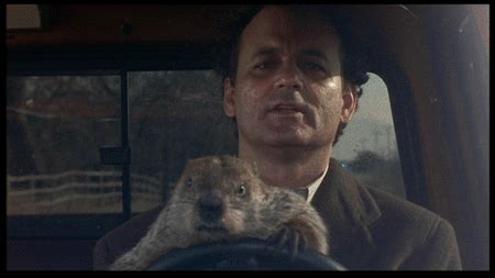 groundhog day keep the talent happy it s february what s coming next