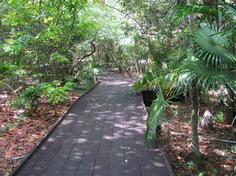 Botanical Gardens Key West Photos Of Key West Tropical Forest And Botanical Garden