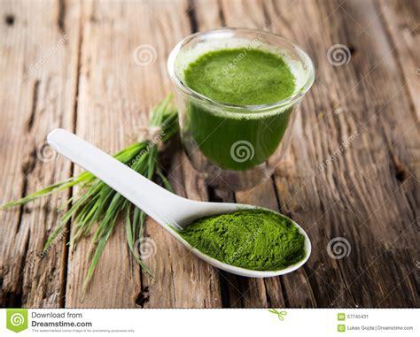 Spirulina And Chlorella Detox by Barley And Chlorella Spirulina Stock Photo Image