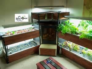 indoor garden setup indoor aquaponics5913 7 aqua botanical