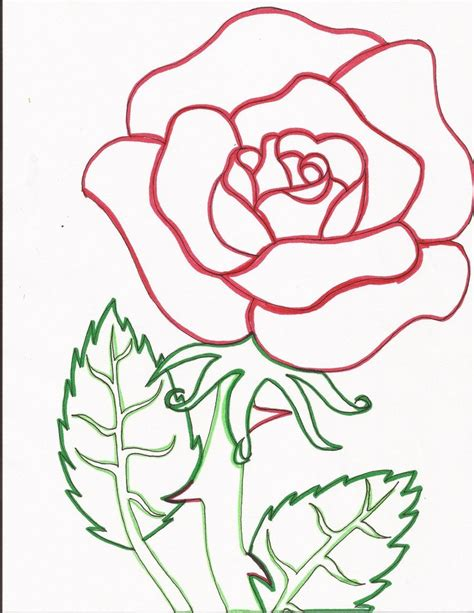 red rose line art by day week on deviantart