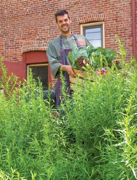 farm to table kansas city farm to table growing more than just food edible