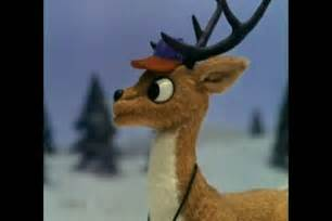 rudolph red nosed reindeer christmas movies image 3172398 fanpop