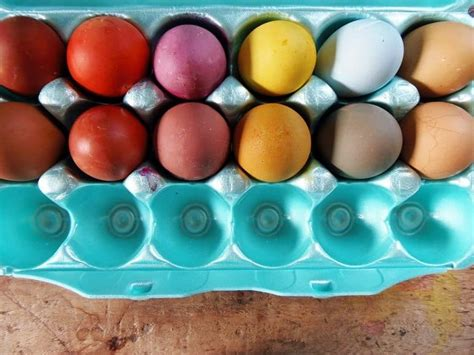 how to dye eggs with food coloring without vinegar how to dye easter eggs without a kit