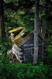25 best ideas about forest cabin on cabin