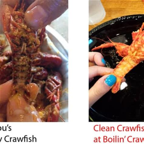 what is the difference between a dirty crab and a clean crab bayou cajun seafood crawfish closed 73 photos 43