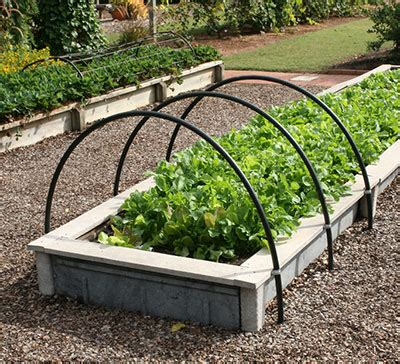 vegetable boxes for the garden wonderful plastic garden boxes for vegetables gardening in