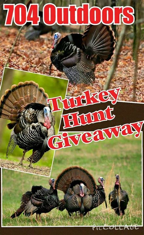 Hunting Contest Giveaways - turkey hunt giveaway 704 outdoors