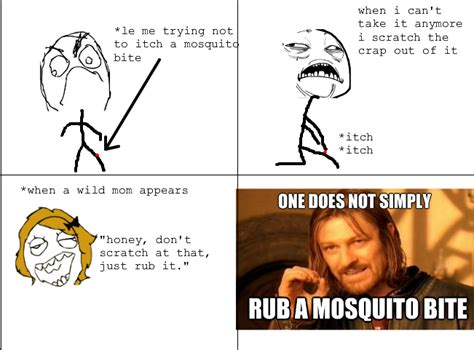 Mosquito Meme - mosquito meme related keywords mosquito meme long tail