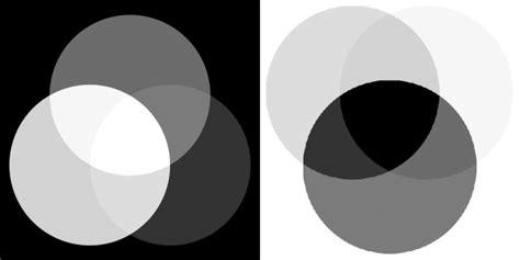 imagenes blanco y negro sin grises blanco y negro digital b 225 sico memoria visual