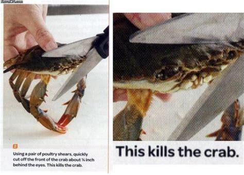 Crab Scissors Meme - this kills the crab imgur