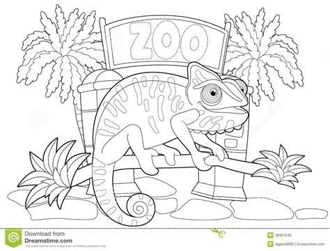 zoo map coloring page coloring page the zoo illustration for the children