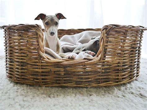 cuscini per cani fai da te cucce fai da te per cani foto 13 31 tempo libero pourfemme