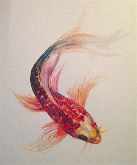watercolor tattoos fish 25 best ideas about koi on koi carp japanese