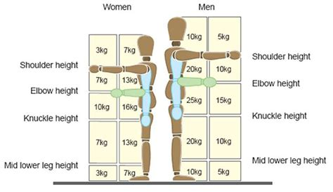 safe lifting diagram safe lifting diagram 20 wiring diagram images wiring