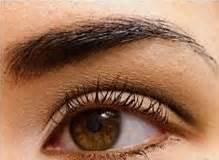 tutorial make up natural pergi ke kus tutorial make up mata untuk kuliah