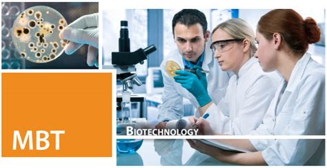 Mba In Biotechnology In Canada by Biotechnology Professional Degree Programs San Jose