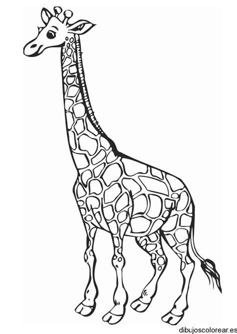 imagenes para colorear jirafa dibujo de una jirafa sonriendo