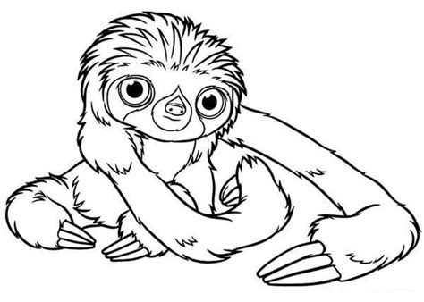 sloth adult coloring coloring pages