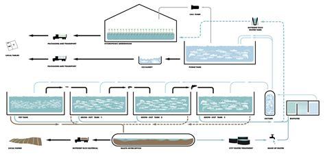aquaponics diagram aquaponics system diagram pictures to pin on