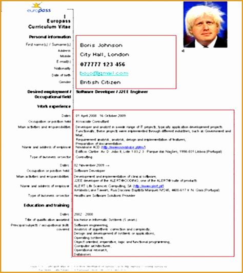 Professional Pilot Resume Format by 8 Professional Pilot Resume Template Free Sles