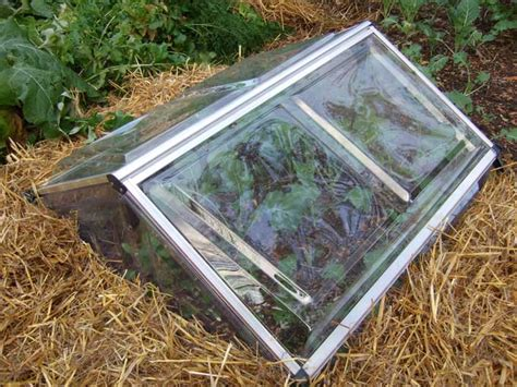 Cold Frame Gardening by Protective Devices For Fall And Winter Vegetable Gardens
