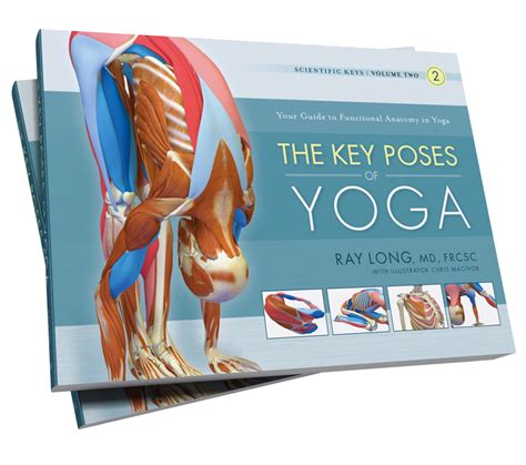libro key poses of yoga bandha yoga