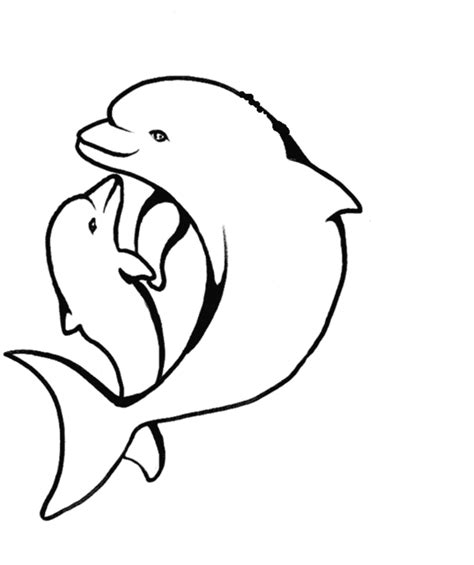Baby Dolphin Coloring Pages baby dolphin coloring pages coloring home