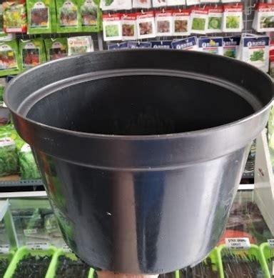 jual pot bunga tanaman hitam  cm bibitbungacom