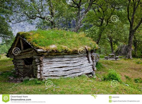 abandoned hut   forest stock image image  wooden shed