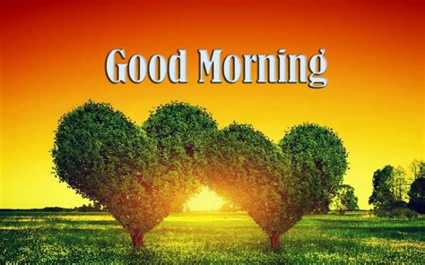 images de good morning good morning wishes with heart pictures images