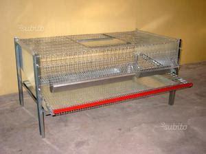 gabbie per quaglie a terra gabbia per quaglie pulcini predisposta riscaldata posot