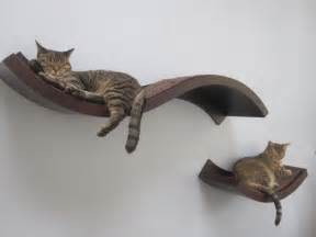 shelving for cats nifty curvy shelves doesn t ikea something like this
